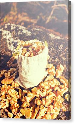 Sack Of Country Walnuts Canvas Print by Jorgo Photography - Wall Art Gallery