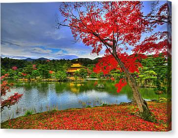 Red Leaf Canvas Print - Sacred Autumn by Midori Chan