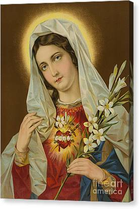 Sacred Heart Of The Virgin Mary Canvas Print by European School