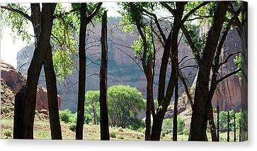 Sacred Space - Canyon De Chelly Canvas Print