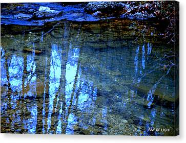 Canvas Print featuring the photograph Sacred Water Life by Kicking Bear  Productions