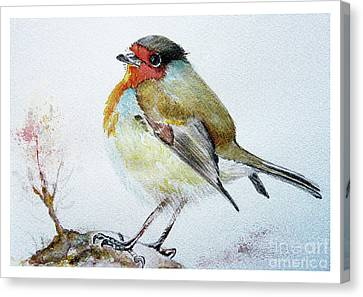 Sad Robin Canvas Print by Jasna Dragun