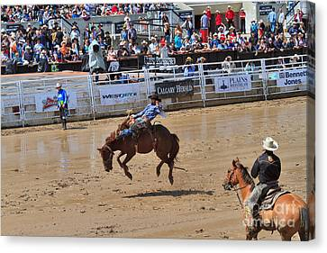 Saddle Bronc Riding Event At The Calgary Stampede Canvas Print by Louise Heusinkveld