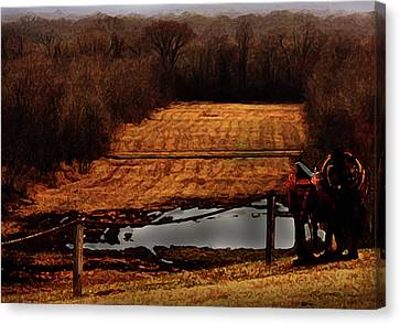 Saddle Up Enjoy The View Canvas Print by Kim Henderson