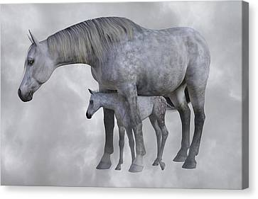 Forelock Canvas Print - Safe Harbor  by Betsy Knapp