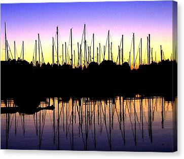 Canvas Print featuring the photograph Safe Haven by Will Borden