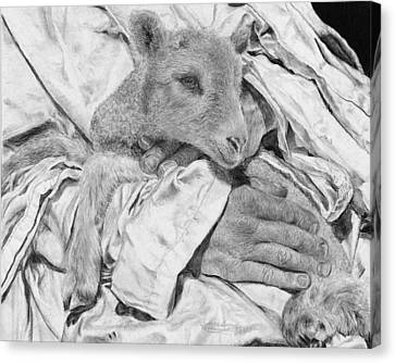 Safe Canvas Print by Jyvonne Inman