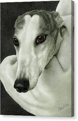 Rescued Greyhound Canvas Print - Safety by Ann Ranlett