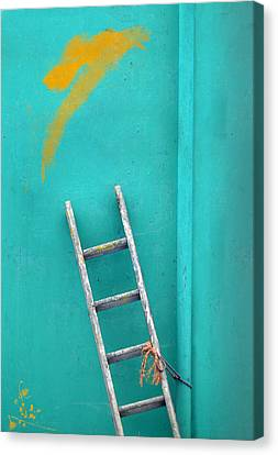 Saffron Slip Canvas Print