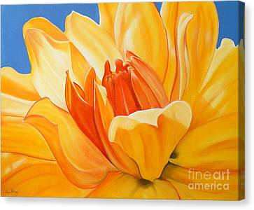 Saffron Splendour Canvas Print by Colleen Brown