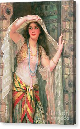 Safie Canvas Print by William Clark Wontner