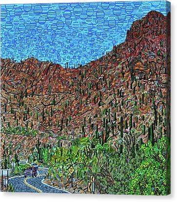 Sagauro National Park Canvas Print by Micah Mullen