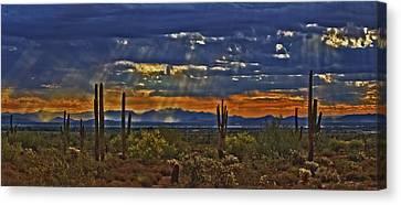 Rain Barrel Canvas Print - Saguaro Dawn by Kenneth Roberts