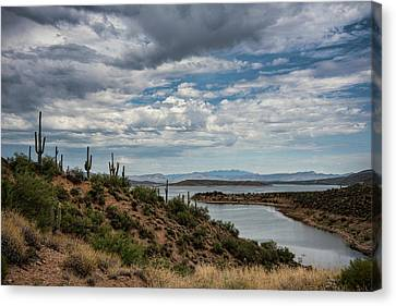 Canvas Print featuring the photograph Saguaro With A Lake View  by Saija Lehtonen