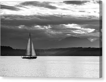 Sail Away Canvas Print by TL  Mair