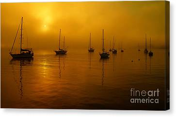 Sail Boats In Fog Canvas Print