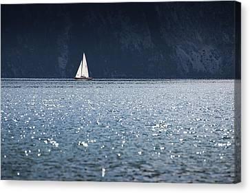 Sailboat Canvas Print by Chevy Fleet