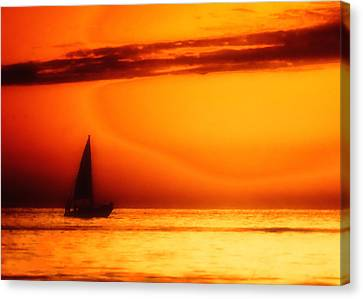 Sailboat In Orange Canvas Print by Lyle  Huisken