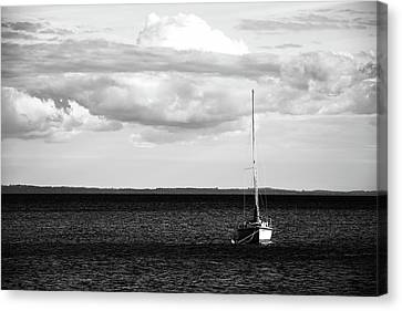 Sailboat In The Bay Canvas Print by Onyonet  Photo Studios