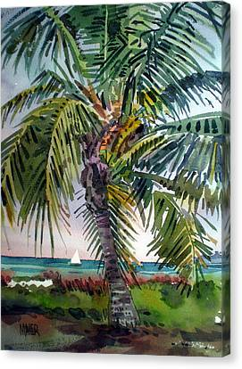 Palm Tree Canvas Print - Sailboat In The Keys by Donald Maier