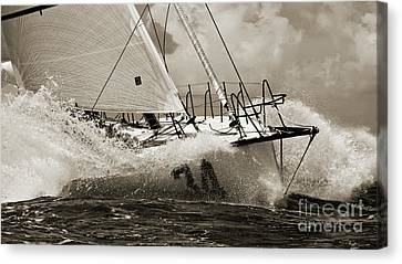 Sailboat Le Pingouin Open 60 Sepia Canvas Print by Dustin K Ryan