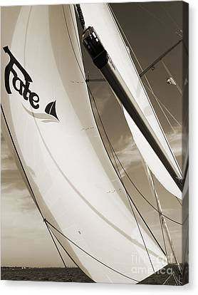 Sailboat Sails And Spinnaker Fate Beneteau 49 Charelston Sc Canvas Print by Dustin K Ryan