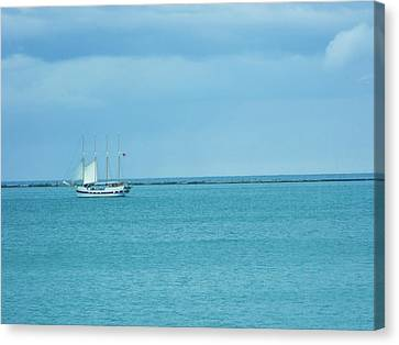 Canvas Print - Sailboat Summer by Anna Villarreal Garbis
