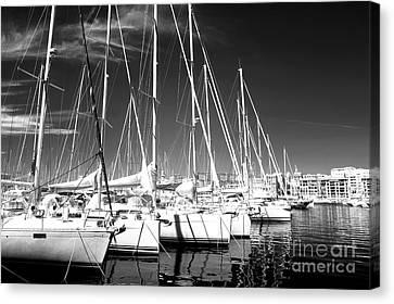 Sailboats Docked Canvas Print by John Rizzuto