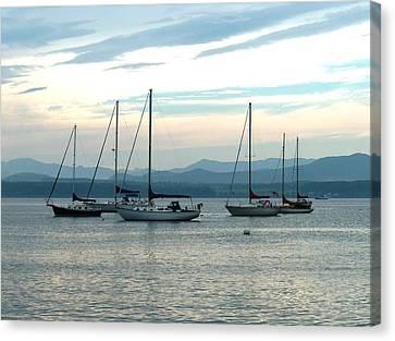 Sailboats Docked Canvas Print