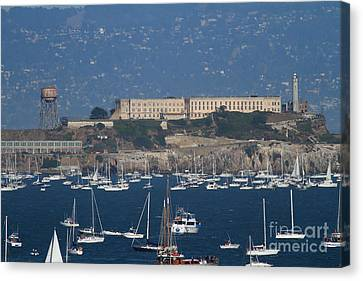 Sailboats In The San Francisco Bay Overlooking Alcatraz . 7d8080 Canvas Print
