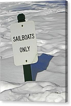 Sailboats Only Canvas Print by Elizabeth Hoskinson