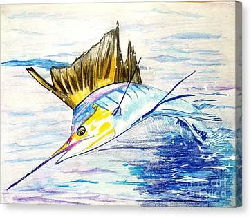 Sailfish Saltwater Fishing Canvas Print by Scott D Van Osdol