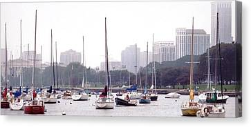Sailing Amongst Friends Canvas Print by Jackie Bodnar