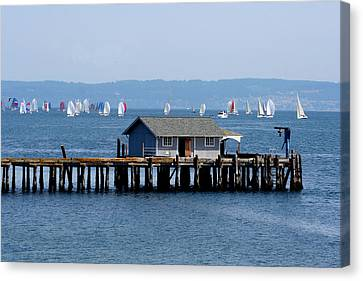 Sailing At Penn Cove Canvas Print by Mary Gaines
