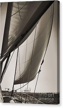 Sailing Beneteau 49 Sloop Canvas Print by Dustin K Ryan