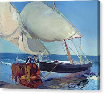 Sailing Boats Canvas Print by Joaquin Sorolla y Bastida