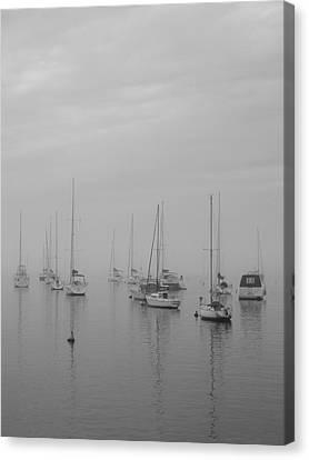 Sailing Bw Canvas Print by Silvia Bruno