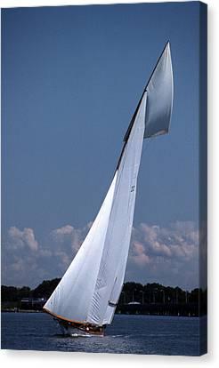 Sailing Elegance Canvas Print by Skip Willits