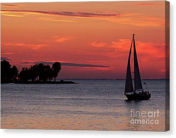 Sailing Home Canvas Print by Joel Witmeyer