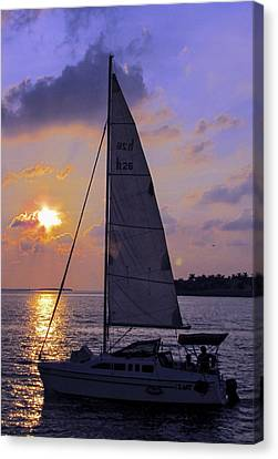 Sailing Home Sunset In Key West Canvas Print by Bob Slitzan