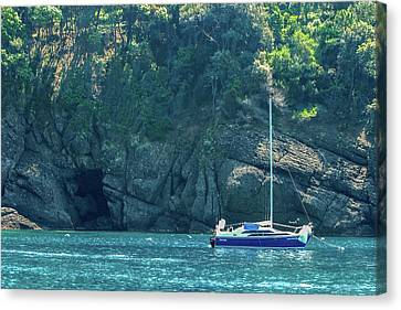 Sailing In Portofino Canvas Print by Al Hurley