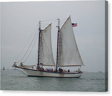 Canvas Print featuring the photograph Sailing Key West  by Nancy Taylor