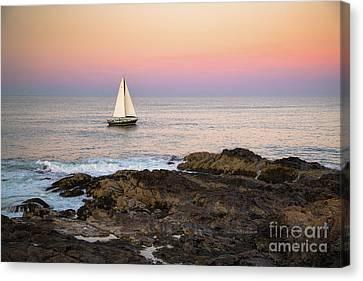 Sailing Off Marginal Way Ogunquit Canvas Print by Benjamin Williamson
