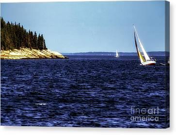 Sailing Penobscoy Bay Canvas Print