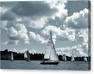 Sailing  Regatta Canvas Print by Terence Davis