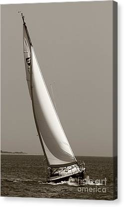 Sailing Sailboat Sloop Beating To Windward Canvas Print by Dustin K Ryan