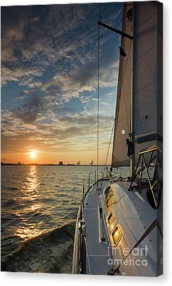 Sailing Sunset On The Charleston Harbor Beneteau 49 Canvas Print