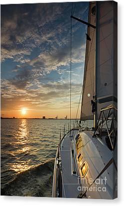 Sailing Sunset On The Charleston Harbor Beneteau 49 Canvas Print by Dustin K Ryan