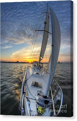 Sailing Sunset Sailboat Fate Charleston  Canvas Print