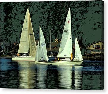 Sailing The Harbor Canvas Print